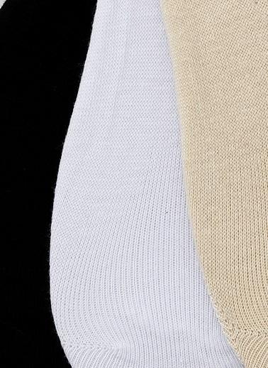 Limon Company Çorap Renkli